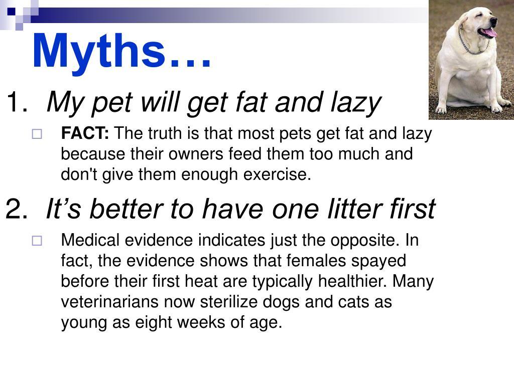 Myths…