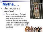 myths55