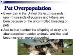 pet overpopulation62