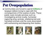 pet overpopulation64