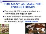 too many animals not enough homes