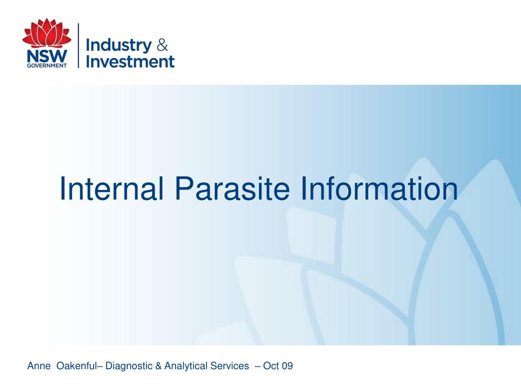 internal parasite information l.