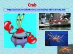 http animals howstuffworks com marine life crab info htm
