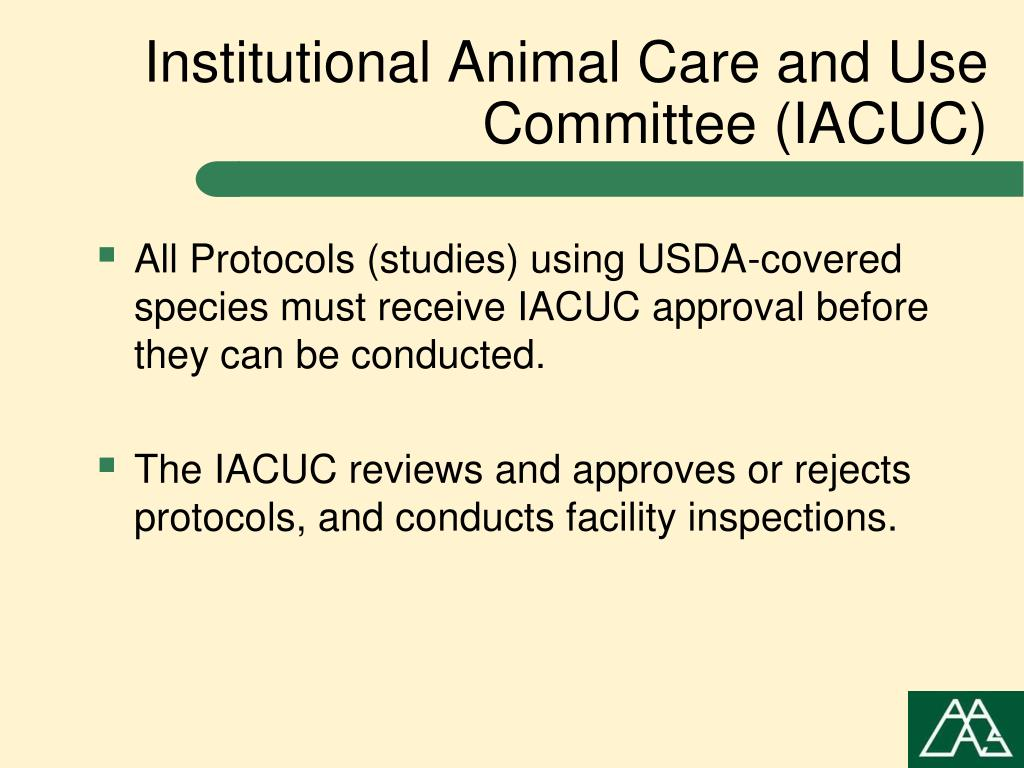 Institutional Animal Care and Use Committee (IACUC)