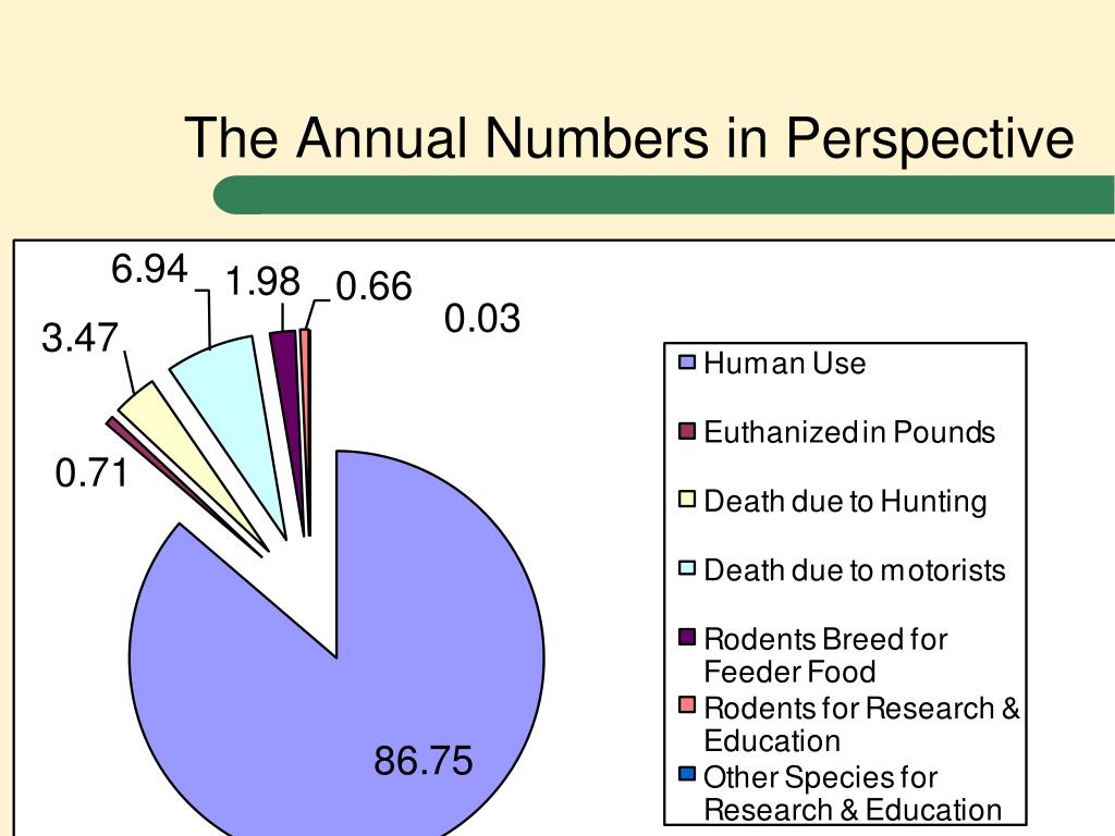 The Annual Numbers in Perspective