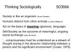 thinking sociologically so306614