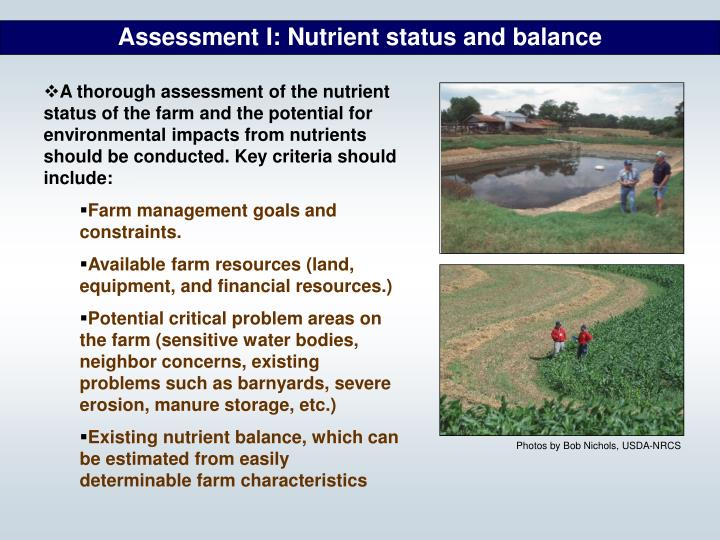 Assessment I: Nutrient status and balance