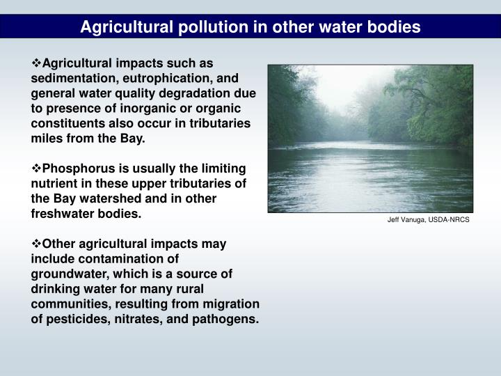 Agricultural pollution in other water bodies