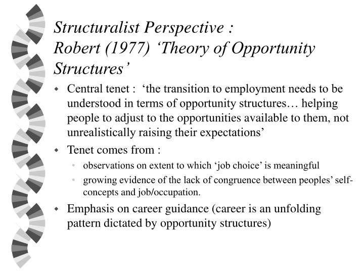 structuralist perspective