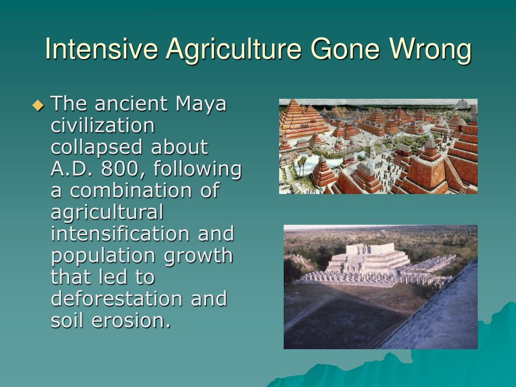 Intensive Agriculture Gone Wrong