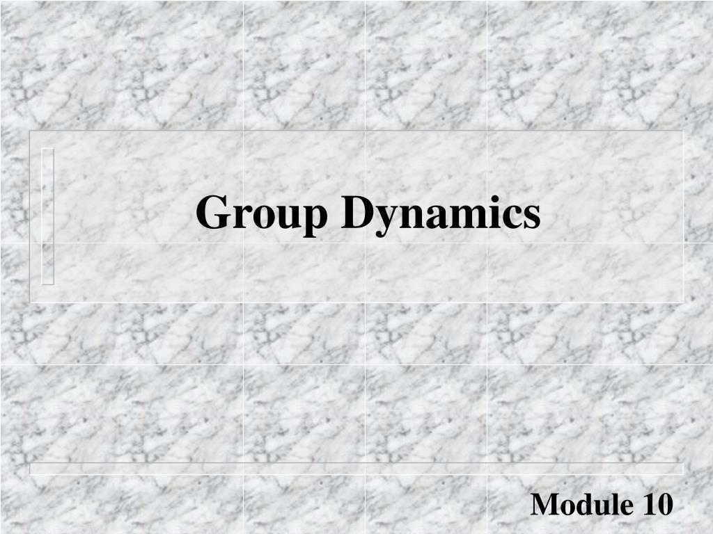 group dynamics l.
