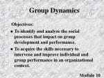group dynamics3
