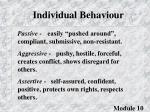 individual behaviour