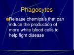 phagocytes66