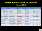 feasts and festivals of jehovah numbers 28 29