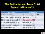 the red heifer and jesus christ typology in numbers 19