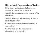 hierarchical organization of traits