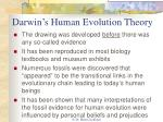 darwin s human evolution theory