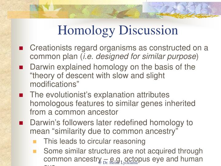 essay creationists and evolutionists Professionally written essays on this topic: evolution vs creation in five pages this paper discusses these writers' views on the evolution v creationism.