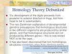 homology theory debunked