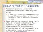human evolution conclusions