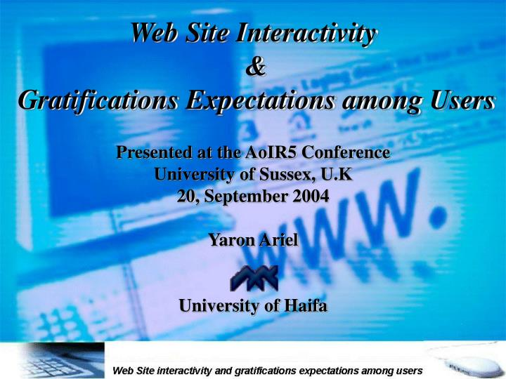 web site interactivity gratifications expectations among users n.