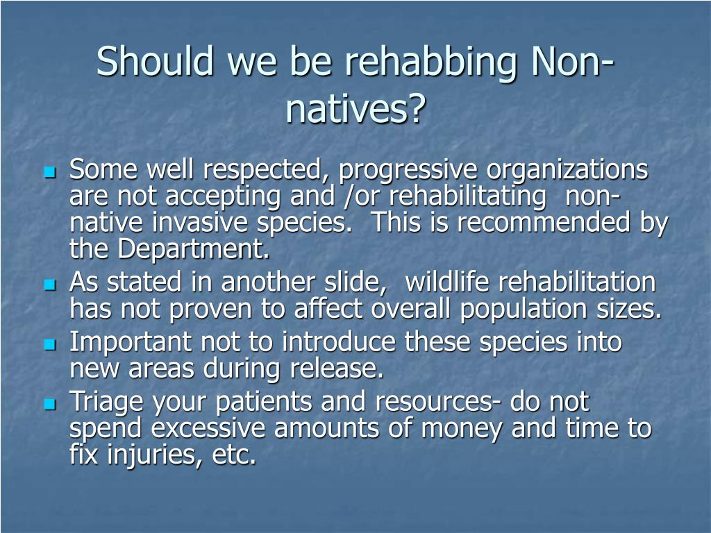 Should we be rehabbing Non-natives?