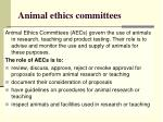 animal ethics committees