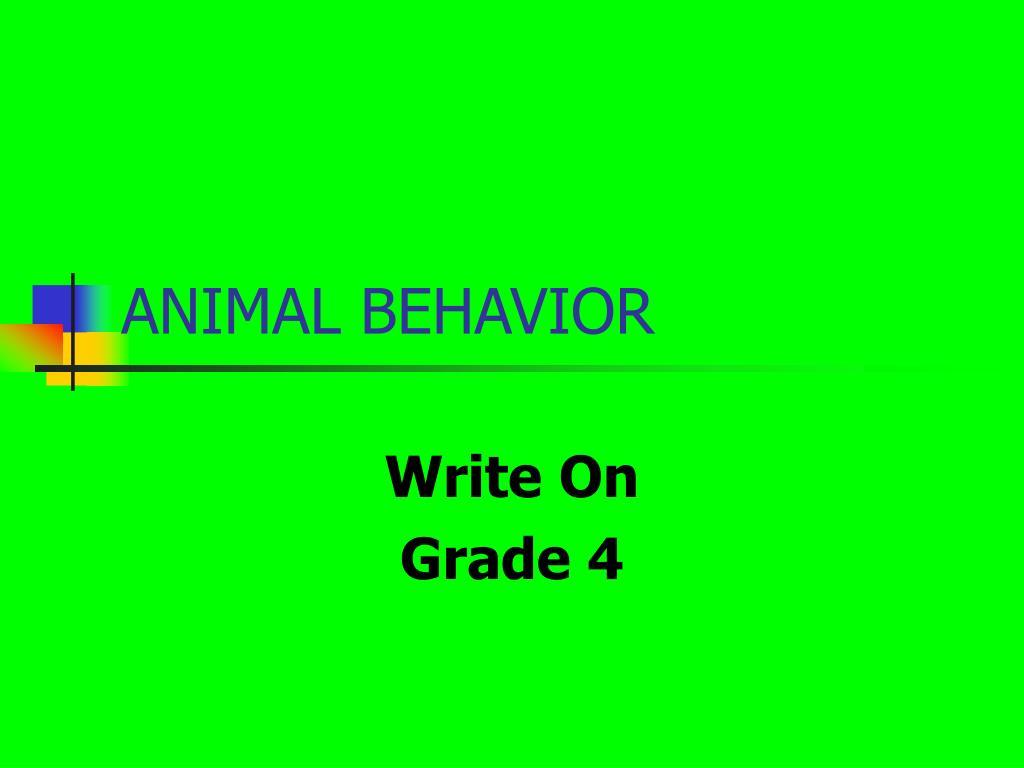 animal behavior l.