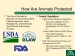 how are animals protected