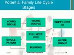 potential family life cycle stages