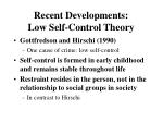 recent developments low self control theory
