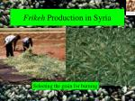 frikeh production in syria