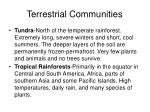 terrestrial communities18