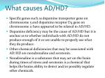 what causes ad hd1