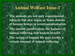 animal welfare issue 1