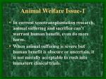 animal welfare issue 16