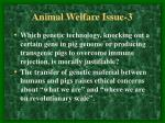 animal welfare issue 3