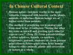 in chinese cultural context11