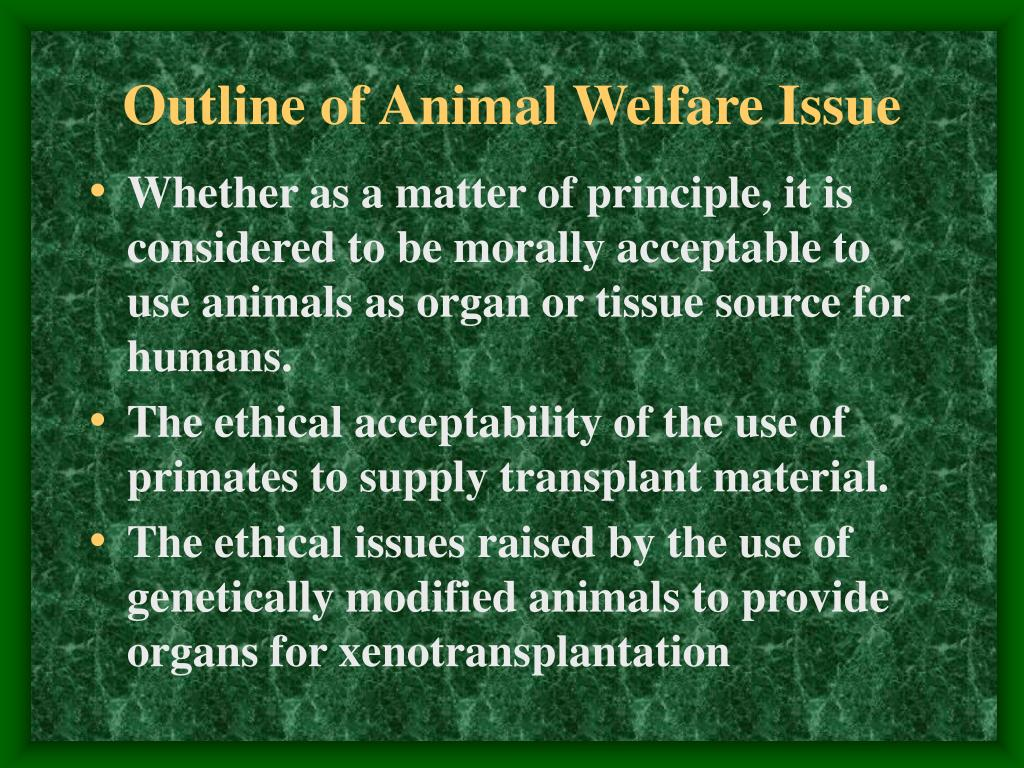 Outline of Animal Welfare Issue