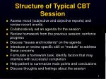 structure of typical cbt session