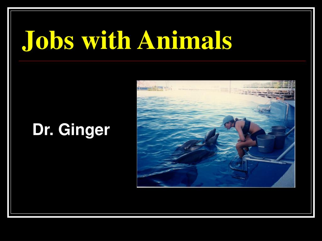 dr ginger l.