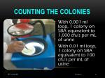 counting the colonies