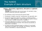 the honos example of item structure