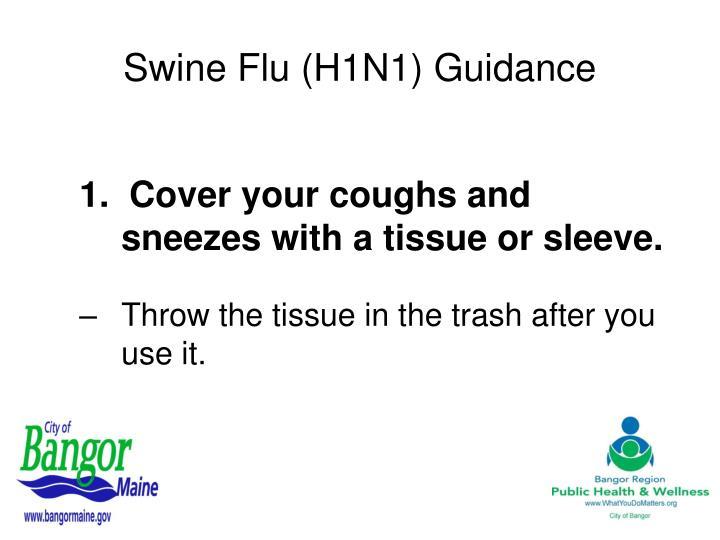 Swine flu h1n1 guidance2
