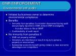 dnr enforcement environmental self audits