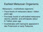 earliest metazoan organisms