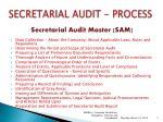 secretarial audit process