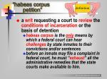 habeas corpus petition