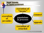 legal issues re capital punishment